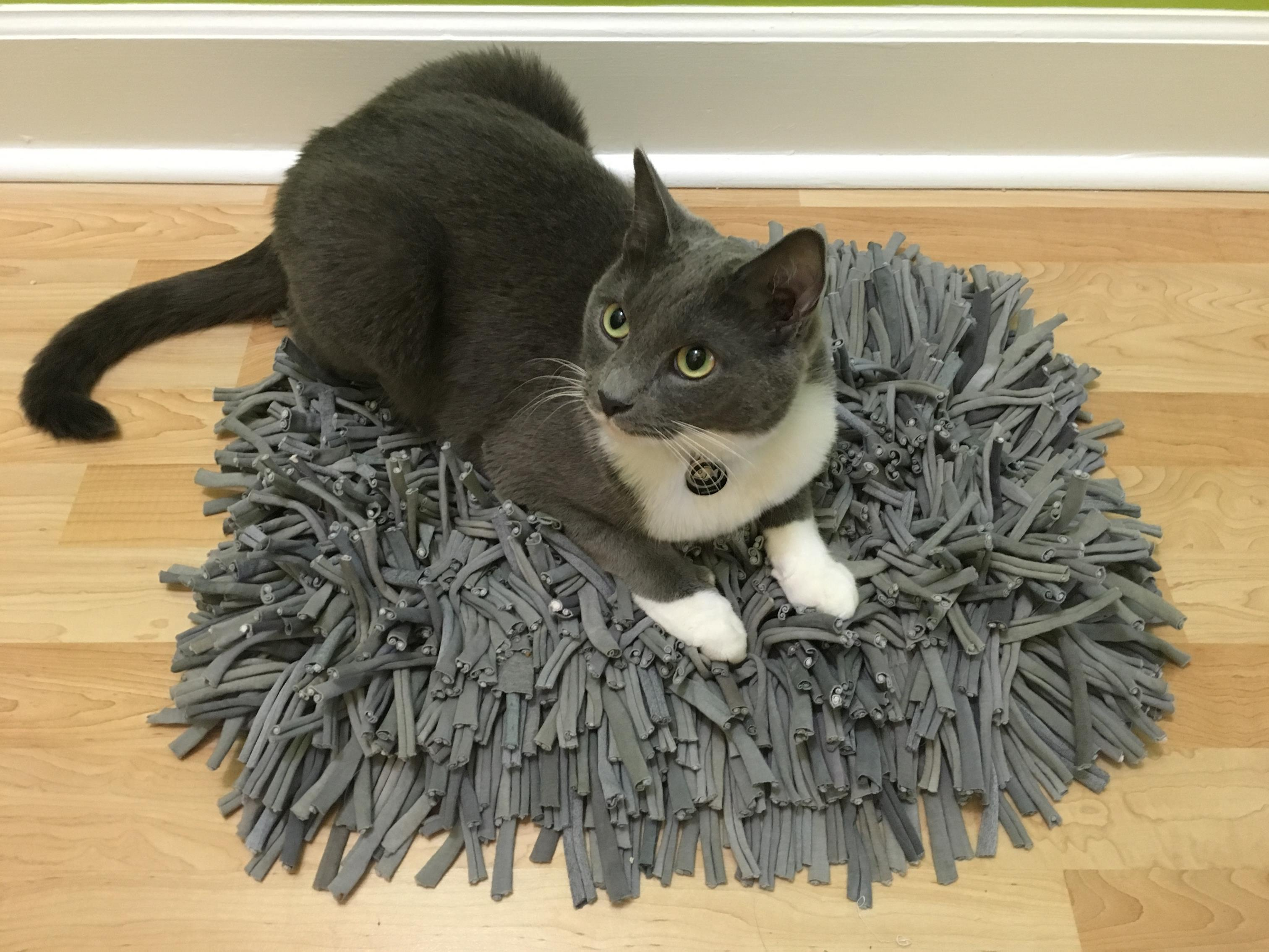 Other ways to use your Snuffle Mat!