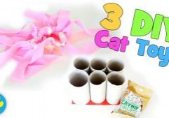 3-Super-Simple-DIY-Cat-Toys