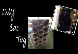DIY-Cat-Toy