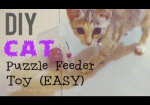 DIY-Easy-Cat-Puzzle-Feeder-Toy